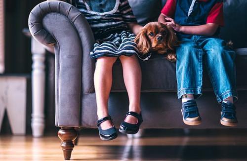 gyermektartásdíj és elhelyezés